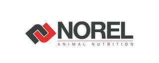 norel-logo